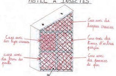 Réalisation de la maquette d'un hôtel à insectes